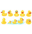 yellow bath duck rubber water toys for kids vector image