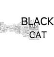 a black cat is just a cat text word cloud concept vector image vector image