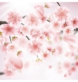 Cherry blossom realistic sakura EPS 10 vector image vector image