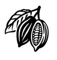 cocoa beans black icon on white vector image