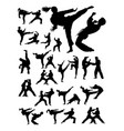 couple exercising karate detail silhouette vector image vector image