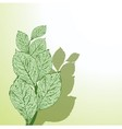 Grunge leafs vector image vector image