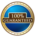 Hundred Percent Guaranteed vector image vector image