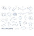 marine life contour icons vector image vector image