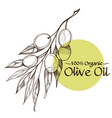 olive branches contour drawings for decoration of vector image vector image