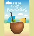 tropic coconut fresh cocktail pina colada on a vector image vector image