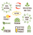 typography design for organic food vector image vector image