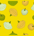 vegetable pattern with squash vector image vector image