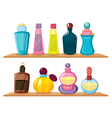 Wooden shelves with different perfumes vector image
