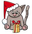 cat with xmas present cartoon vector image