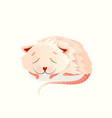 baanimal mouse or any rodent sleeping deep vector image
