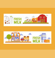 dairy products cheese and drinking milk farm vector image