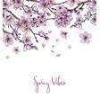 sakura branches in bloom with falling petals vector image vector image