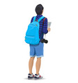 tourist with a backpack vector image