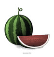 watermelon hand drawing vintage clip art isolated vector image vector image