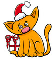 cartoon cat with christmas present vector image vector image
