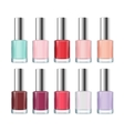 Colorful Nail Polish Bottle Set vector image