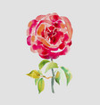 decorative hand painting of red rose vector image vector image