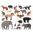 savannah characters collection vector image