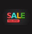 the final offer sale promo banner vector image vector image