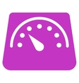 Weight Meter Icon vector image vector image