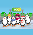 zoo penguin group concept banner cartoon style vector image vector image