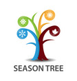 tree of seasons vector image