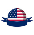 american campaign button with a ribbon vector image