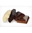 pieces chocolate icon vector image vector image