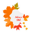 set of autumn yellow leaves and blot emblem with vector image