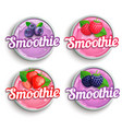 set strawberry blackberry raspberry blueberry vector image