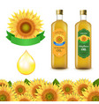 sunflowers and olive oils bottle white labels vector image