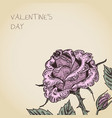 valentine card with rose flower vector image vector image