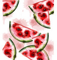 watermelon watercolor texture fruits vector image vector image