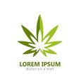 marijuana leaf abstract logo vector image