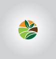 agriculture logo vector image vector image