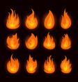 graphic flames isolated on vector image vector image
