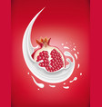 milk splash with fresh pomegranate vector image vector image