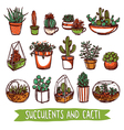 Succulents And Cacti Color Sketch Set vector image vector image