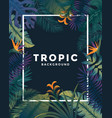 tropical poster with frame vector image