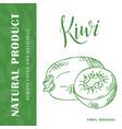 hand drawn fruit sweet kiwi element vector image