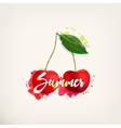 Watercolor card with cherry vector image