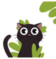black cat head face silhouette vector image vector image