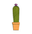 cactus desert plant vector image vector image