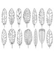feather quill tribal hand drawn line set vector image