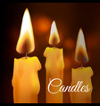 realistic flame wax church candle set on vector image