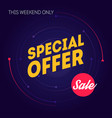sale banner template special offer this weekend vector image vector image