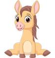 cartoon funny bahorses sitting vector image vector image