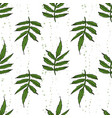 color seamless pattern of marigold leaves vector image
