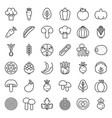 cute line vegetable icon set vector image